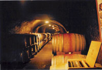 Del Dotto Winery cave
