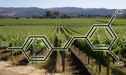 Resveratrol Supplements Deliver the Recommended Daily Dose of the Antioxidant