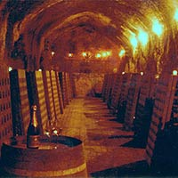 Cliff Lede Winery cave