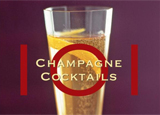 101 Champagne Cocktails by Kim Haasarud