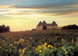 Chateau Elan in Atlanta is one of our Top 10 Wine Country Inns in the U.S.